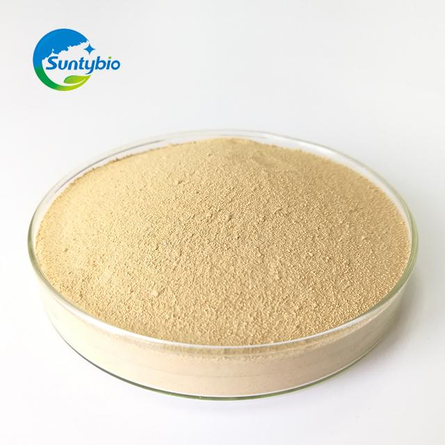 Yeast Hydrolysate /Autolyzed Yeast