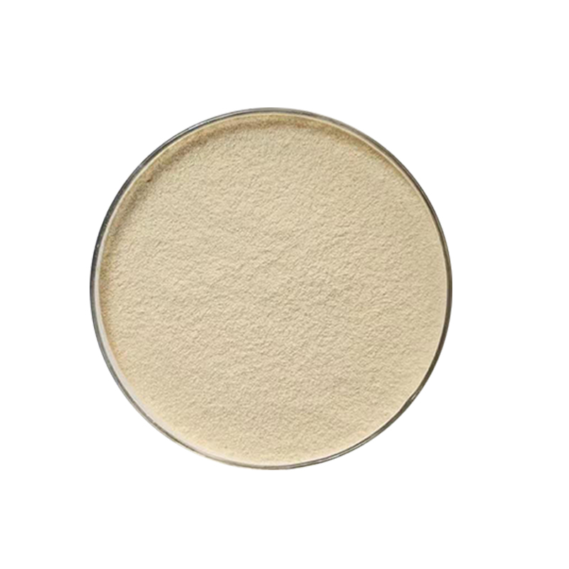 Inactive brewers yeast powder